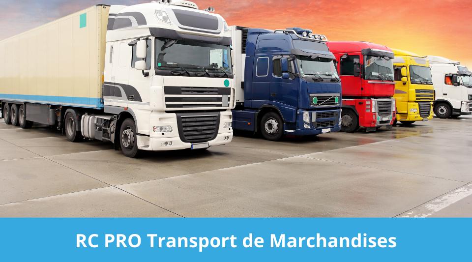 transporteurs de marchandises tous couverts par une assurance rc pro